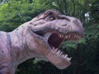dinosaur-1586722_640