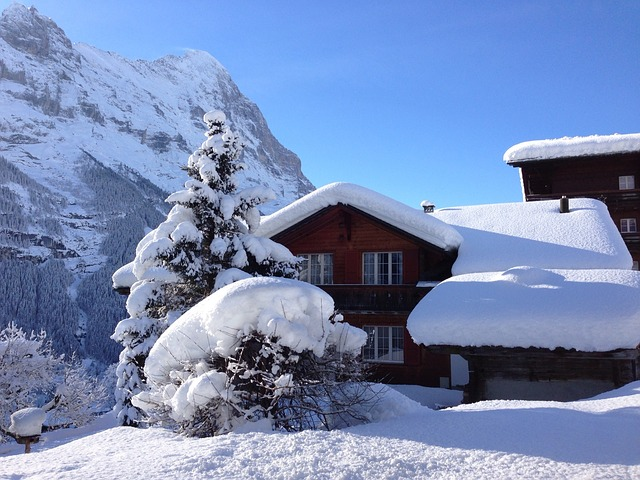 зима снег швейцария