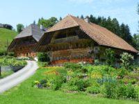 Шале. Швейцария. Автор David Mark / pixabay.com