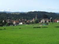 швейцария луг поле